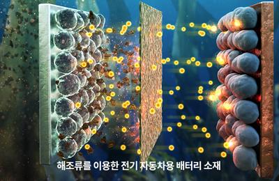 화학 박수진 교수 공동연구팀, 전기자동차 배터리 성능, 젤리 만드는 '한천'으로 높인다