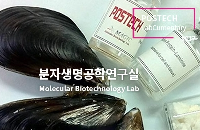 분자생명공학연구실<br>Molecular Biotechnology Lab
